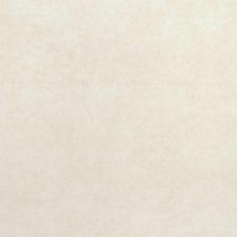 Carrelage fin sol et mur Trust marfil 100*100 cm