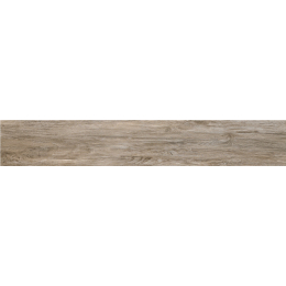 Découvrir Soleras Grey 16,4*99,8 cm