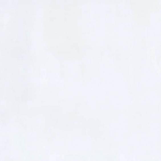 Stella white 20*20 cm