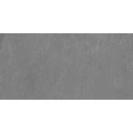 Découvrir Roma grigio R11 60*120 cm