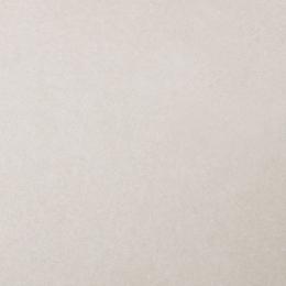Découvrir Sand white R11 61*61 cm