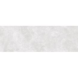 Découvrir Carat Silver 20*60 cm