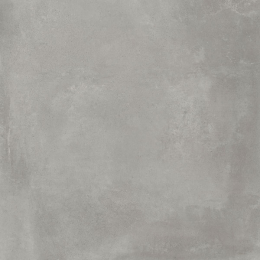 Découvrir Prestige concrete 60*60 cm